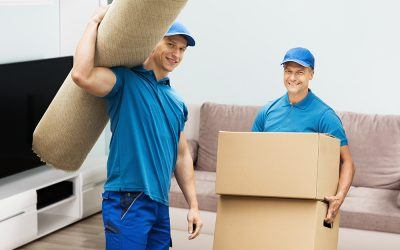 Karma Movers Voted A Top Moving Company in St. Petersburg